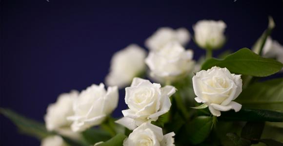 Prévoyance obsèques